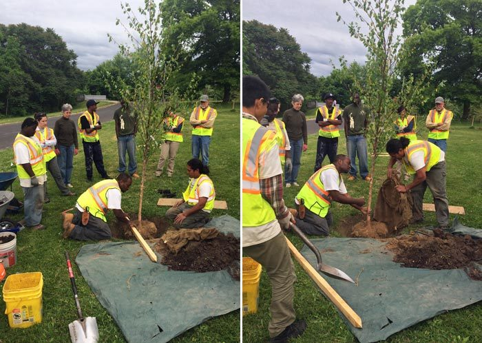 Onondaga Earth Corps Save the Rain tree planting event