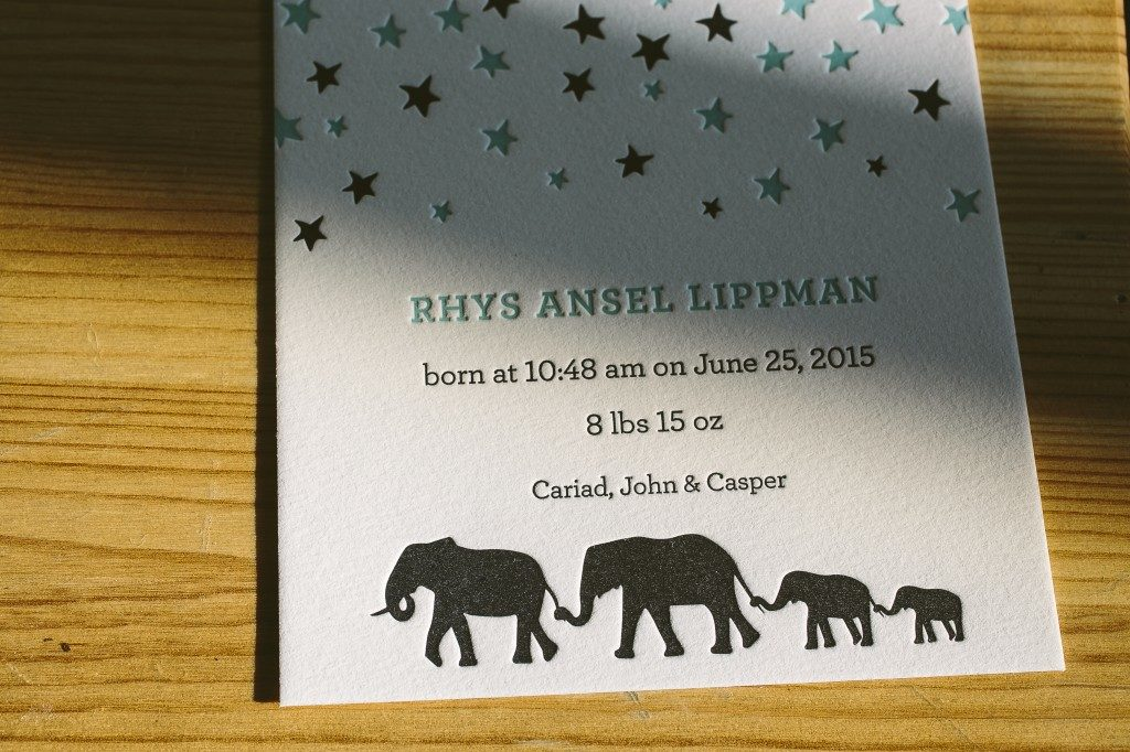custom letterpress elephant birth announcements | Bella Figura