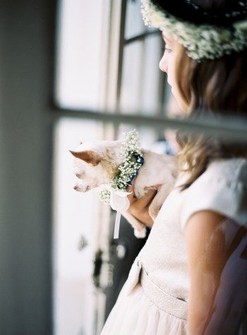 The bride's niece walked her 11 year old Chihuahua down the aisle!