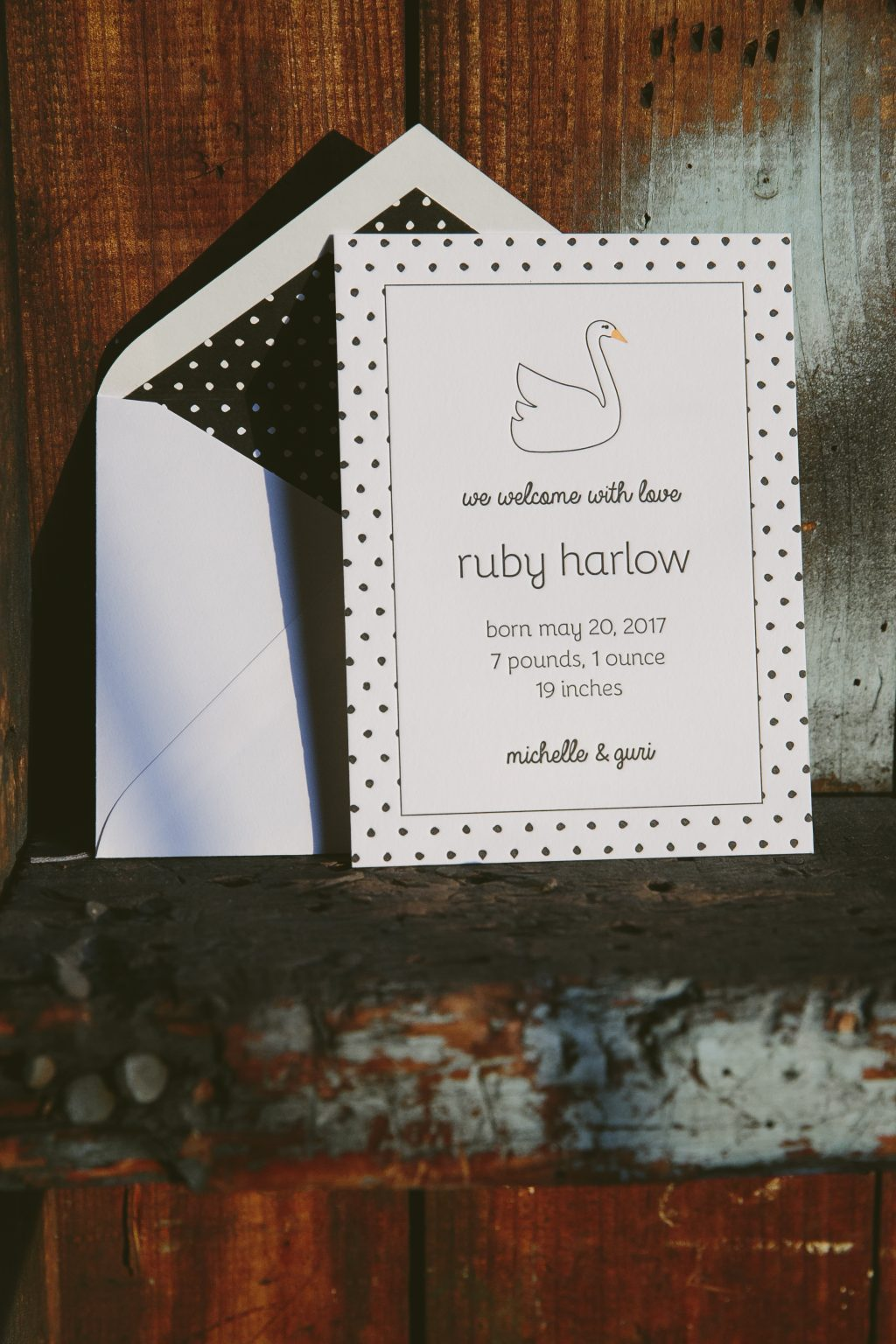 Letterpress goose birth announcements and stationery | Bella Figura