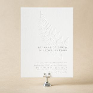Shop over 300 foil letterpress wedding invitations from bella figura alder wedding invitation design stopboris Image collections