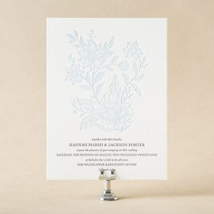 Chicory design