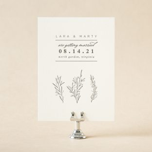 Lara Save the Date design