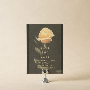 Rosette Save the Date design