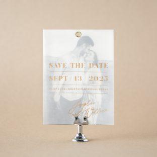 Braunfel save the date design