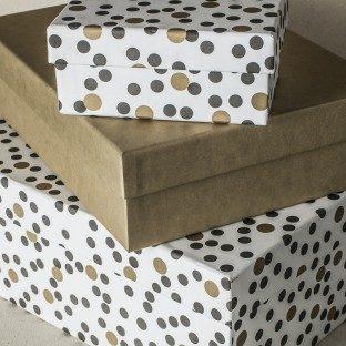 Dots boxes