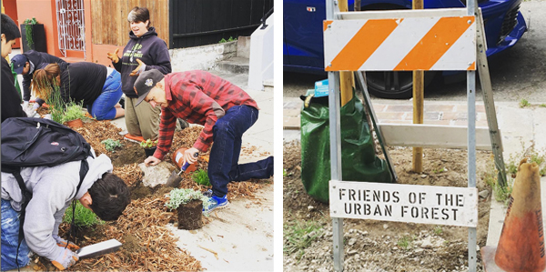 Friend of the Urban Forest helps clean up neighborhoods in San Francisco.