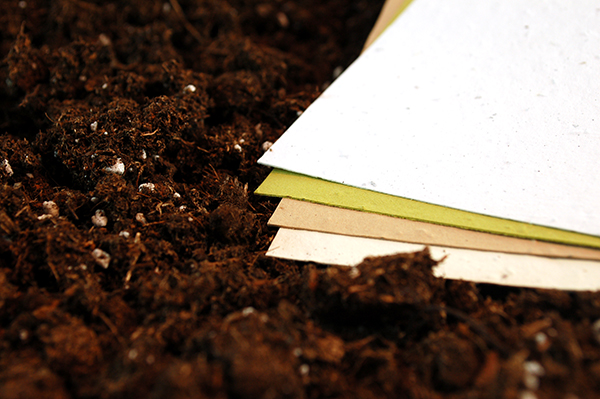Printing on Specialty Papers: Seed Paper or Handmade Paper - Seed paper from Botanical Papers adds eco-friendly touch and memorable impressions.